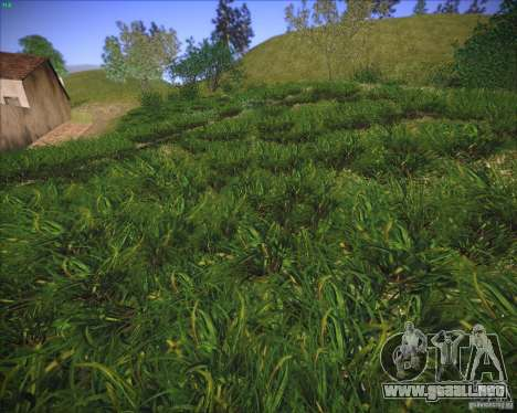 New grass para GTA San Andreas