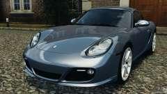 Porsche Cayman R 2012