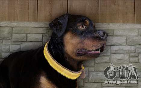 Rottweiler from GTA 5 para GTA San Andreas tercera pantalla