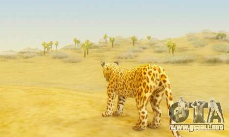 Leopard (Mammal) para GTA San Andreas tercera pantalla