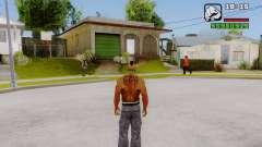 La eliminación de los ceros de la interfaz para GTA San Andreas